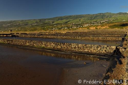 Espace Naturel Sensible du Piton de la Pointe au Sel