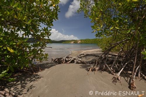 Réserve Naturelle Nationale de la Presqu'île de la Caravelle