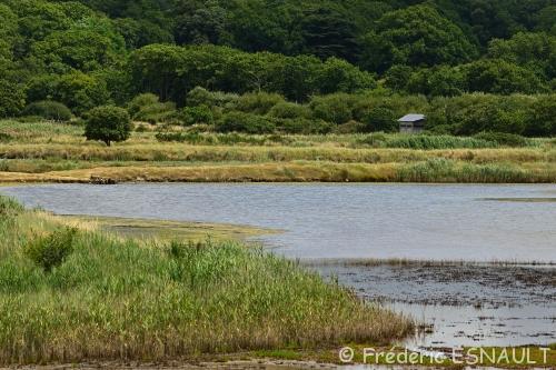 L'Espace Naturel Sensible des Marais du Duer