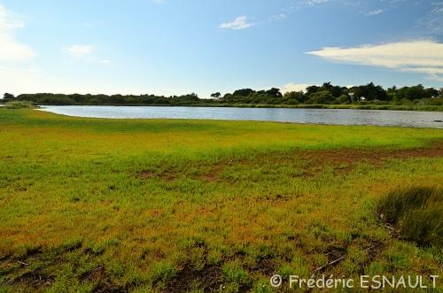 L'Espace Naturel Sensible du Marais du Suscinio